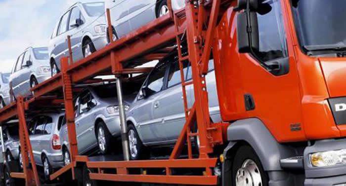 alimann logistics customs clearance service